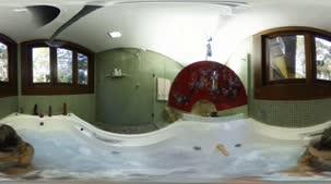 Confira Barbara Alves na banheira em 360º