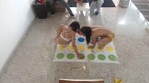 Gostosas jogam twister peladinhas, em vídeo pornô